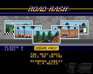 roadrash04.png