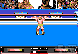 wrestlemania11.png